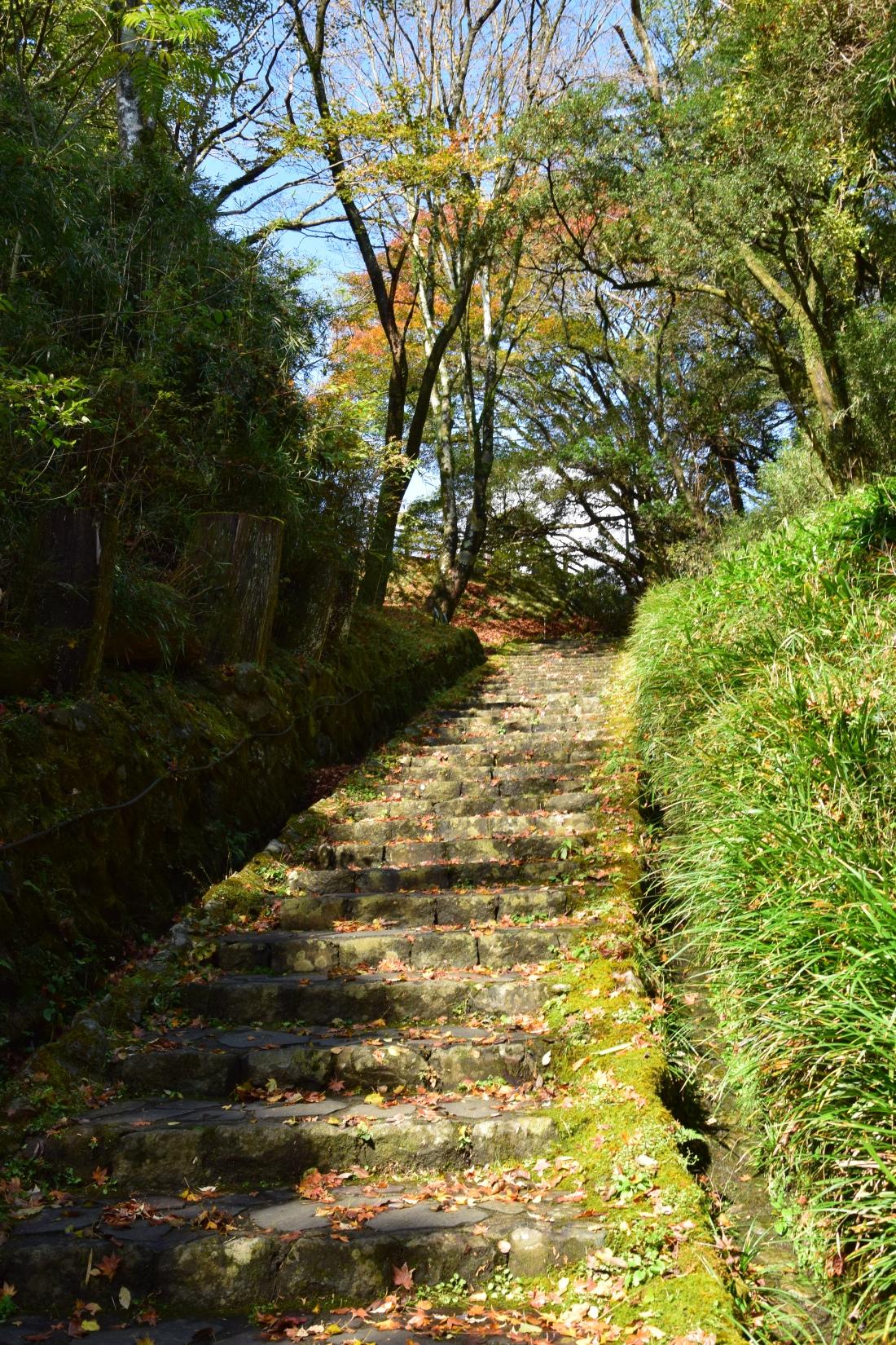 Escalier Parc Lac Ashi Japon